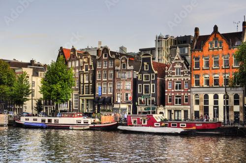 Photo Stands Lavender Amsterdam (Netherlands)