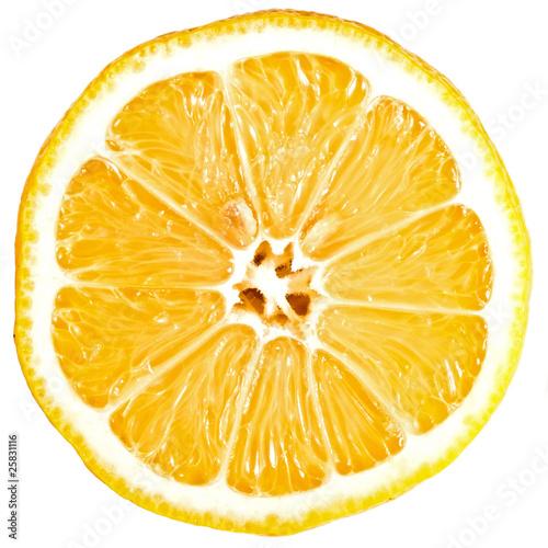 Photo Zitrone Querschnitt