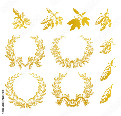 Fotografie, Obraz  Laurel Wreath, set
