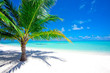 canvas print picture - Holiday Paradise