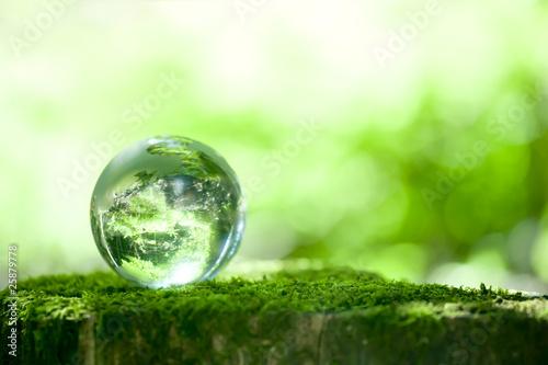 Fotografie, Obraz  森林と地球儀