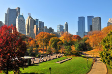 Autumn In The Central Park & N...