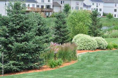 Papiers peints Olive Backyard Landscaping