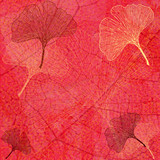 Fond Feuillage et Feuilles Ginkgo en Rouge - Illustration