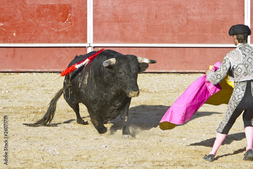 Foto op Plexiglas Stierenvechten Matador and bull in bullfight. Madrid, Spain.