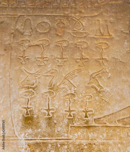 egipskie-hieroglify-z-sakkary-kair