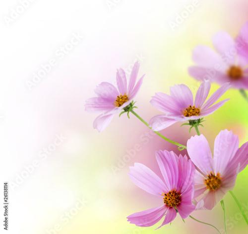 Foto op Canvas Bloemen Beautiful Floral Border.Flower design
