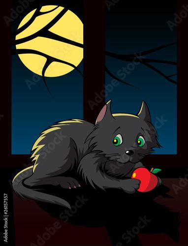 Canvas Prints Fairytale World black kitten