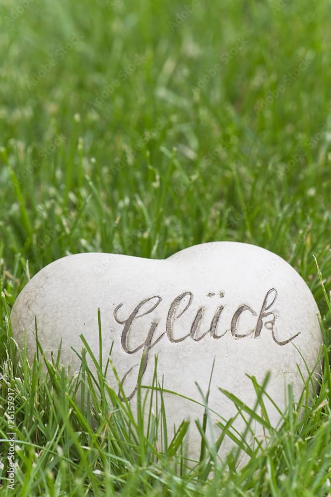 Plissee mit Motiv - Glück im Rasen