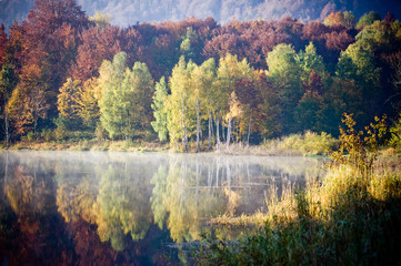 FototapetaBeautiful forest lake in the autumn
