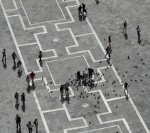 Aerial View Of Piazza San Marc...