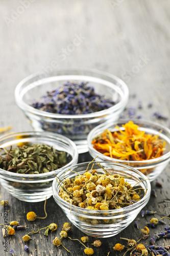 Dried medicinal herbs Canvas Print