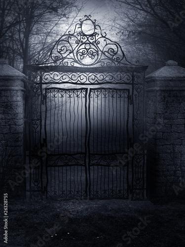 Fotografie, Obraz  Gothic Romance Background