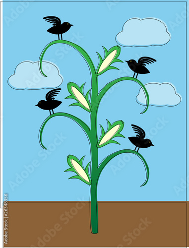 Valokuva  Crows sitting on cornstalk abstract offset coloring