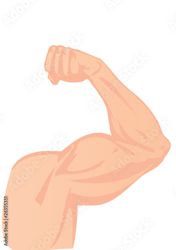 Vector illustration a human hand and a biceps Canvas Print