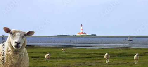 Spoed Foto op Canvas Noordzee Nordfriesland