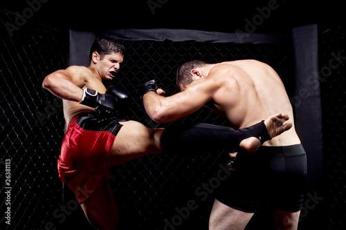 Foto-Rollo - Mixed martial artists fighting - kicking (von Nicholas Piccillo)