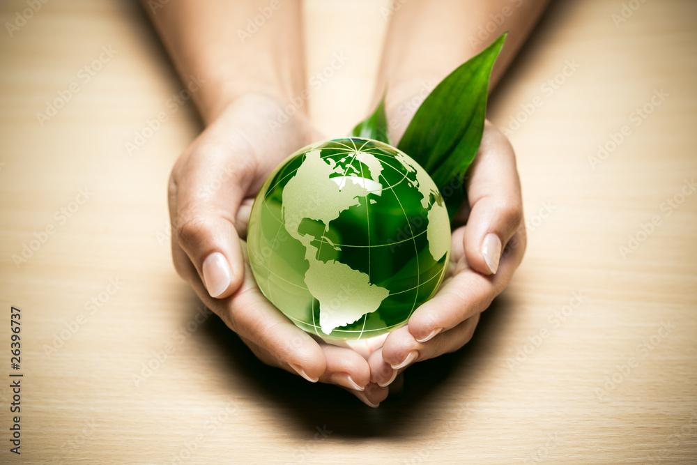 Fototapeta concept écologie planète terre verte