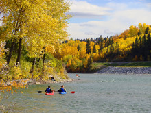 Kayakers On A River Surrounded...