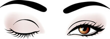 Vector Woman Eyes