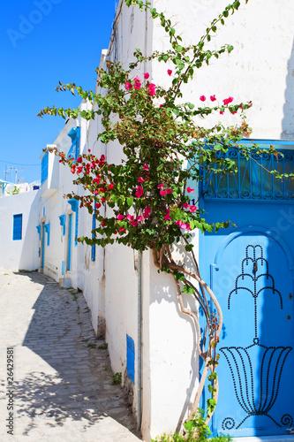 Poster Tunesië Tunesien