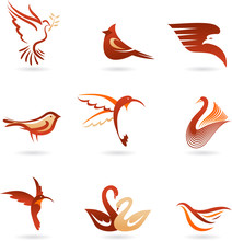 Different  Birds Icons