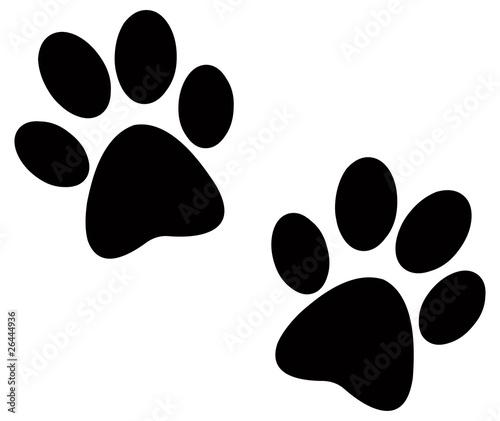 Foto Black paw prints