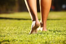 Legs On The Grass