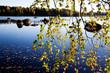 canvas print picture Autumn