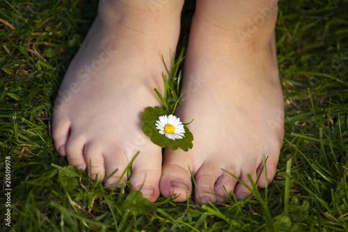 Fotografie, Obraz  Małe dziecięce stópki z kwiatkiem