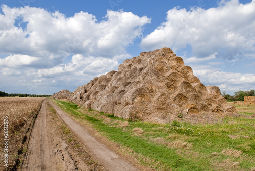 Staande foto Bleke violet Haystacks bales in countryside