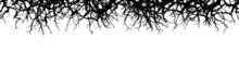 Silhouette Von Trockenen Zweigen - Designelement