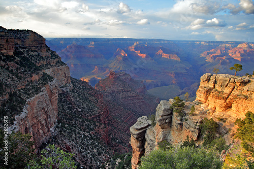 Photo Stands Road in forest Grand Canyon National Park, USA..
