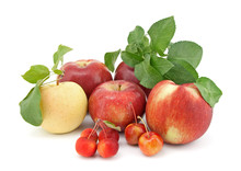 Variety Of Apples On White Bac...