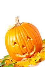 Carved Halloween Jack O Lantern