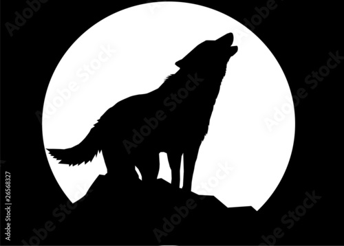 Leinwand Poster wolf (black background)