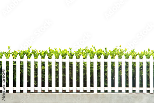 Fotografie, Obraz  white picket fence strip with green garden bushes