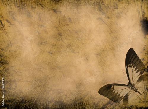 Foto auf Leinwand Schmetterlinge im Grunge old grunge butterfly paper texture background