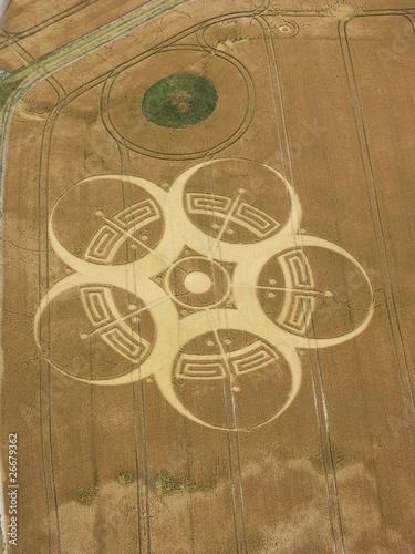 Photo sur Toile UFO Crop circle