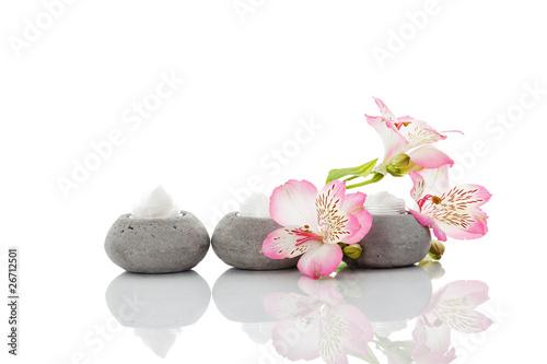 Fototapety, obrazy: Drei Stein Dekodosen  mit Blumen