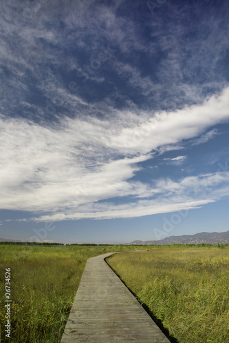Fototapety, obrazy: blue sky,white cloud and winding road