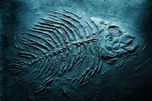 Closeup Of Big Fish Skeleton Fossils On Bottom Of Sea