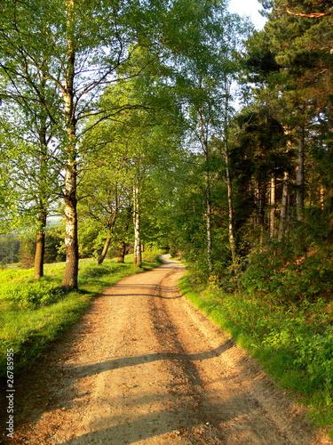 Blühende Naturlandschaft © Nicolette Wollentin