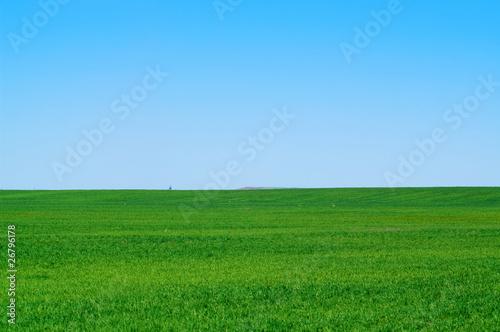 Poster Bleu landscape