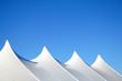 canvas print picture - White Tent Tops