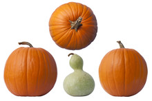 Pumpkins And Gourd On White
