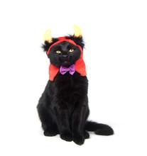 Black Cat With Devil Horns