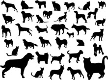 Dogs And Cats Silhouette Collection - Vector