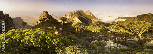 Stitched Panorama, Socotra island