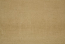 Light Brown Canvas